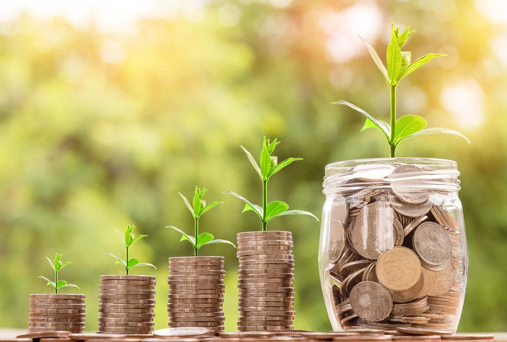 growth-money
